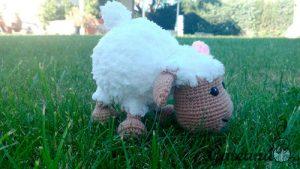 Ojeva Mouton